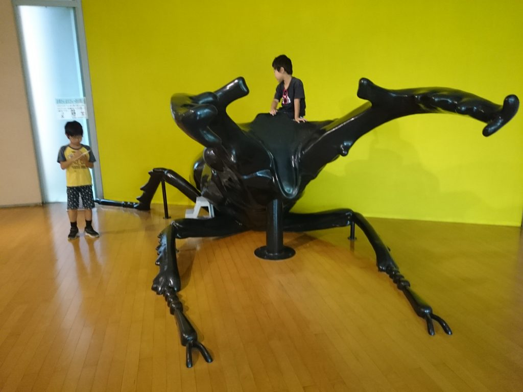 キッピー山のラボ 無料で学べる、遊べる三田市有馬富士自然学習センター