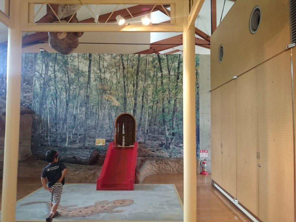 キッピー山のラボ 無料屋内 雨の日 遊べる三田市有馬富士自然学習センター