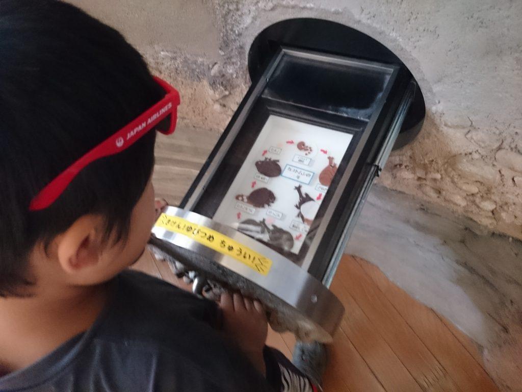 キッピー山のラボ 無料 屋内 雨の日 遊べる三田市有馬富士自然学習センター