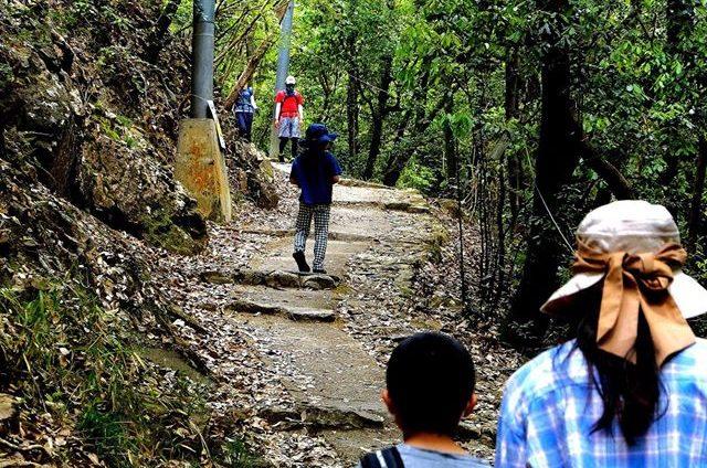 最明寺滝 ハイキング 宝塚 ハイキングコース