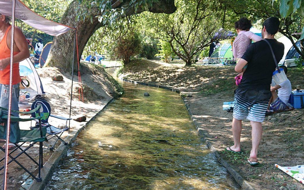 穴場の川遊び!猪名川町立ふるさと館