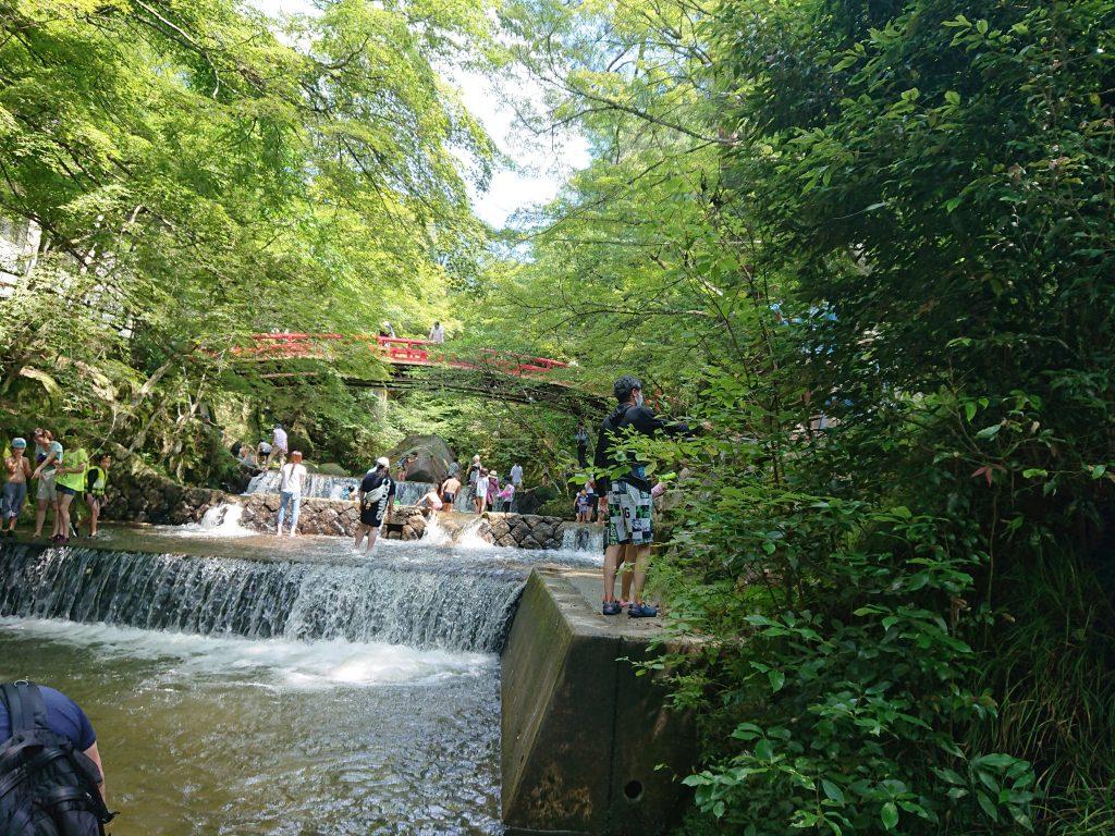 瀬戸市 岩屋堂公園で泳ぐぞ 川遊び