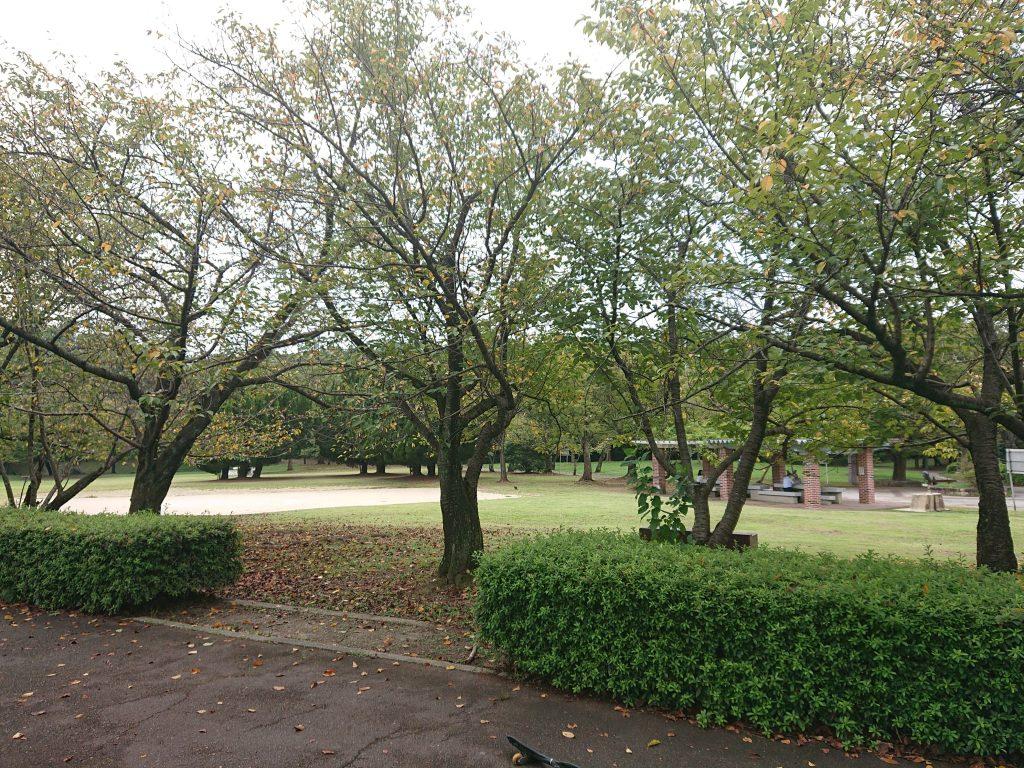 ボール遊びできる公園 名古屋市『牧野ヶ池緑地』名古屋市名東区大型遊具、広い芝生お勧め公園